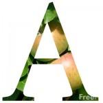 2001_01_3---Letter-A_web